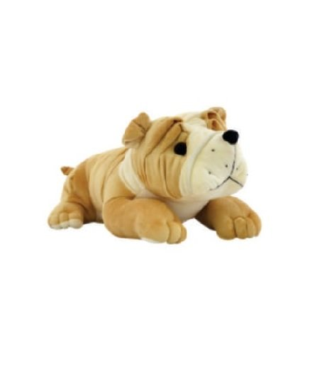 BULL DOG CD - 25CM