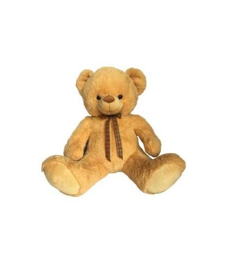 Carry Bear - 60 CM